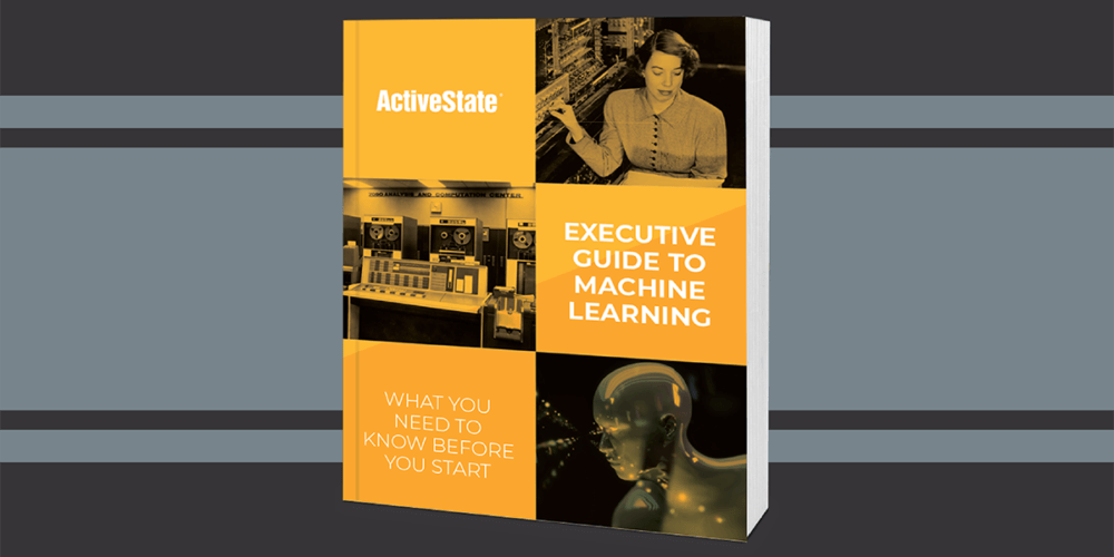 Executive Guide to Machine Learning