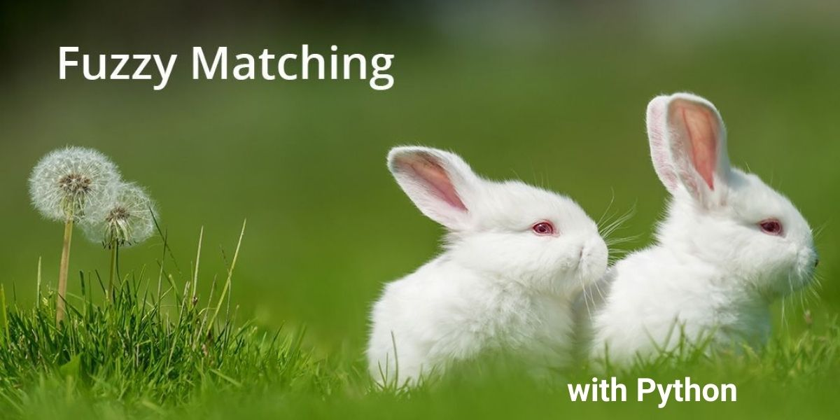 Fuzzy Matching with Python