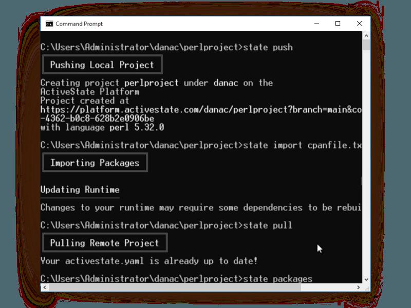 Perl project CLI